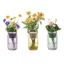 jar flowers jar indoor flower garden window garden hydroponics