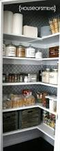 Kitchen Pantry Ideas by Top 25 Best Deep Pantry Organization Ideas On Pinterest Pull