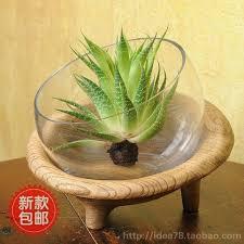 Round Glass Vase 2017 Three Foot Round Glass Vase Vase Hydroponic Support Manual