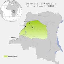 Republic Of Congo Map Bonobo Conservation Initiative Where Do Bonobos Live