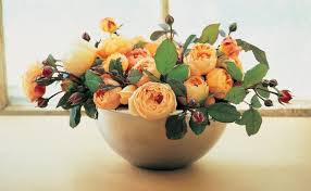 Putting Roses In A Vase Tips For Cutting Garden Roses To Bring Them In The House Fine