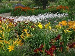 pictures of beautiful gardens with flowers perennial garden design ideas diy