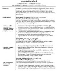 Software Sales Resume Examples by Sample Resume Marketing Executive Free Resume Example And