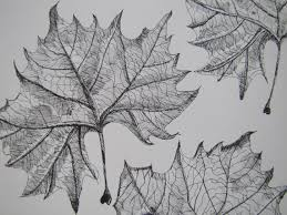 67 best drawing trees u0026 leaves images on pinterest drawing trees