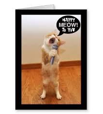 cat birthday ecards hp greeting card paper