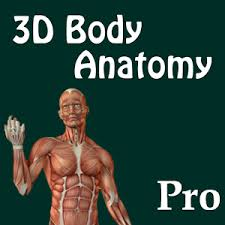 Google Body Anatomy 3d Body Anatomy Doctor Pro Android Apps On Google Play