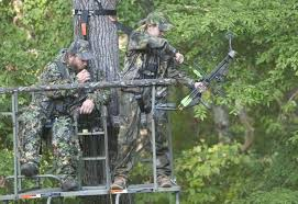 10 must treestand setup tips for whitetail outdoor