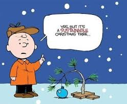Family Christmas Meme - my family keeps bugging me about how boring my christmas tree