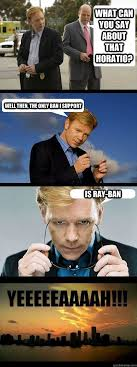 Horatio Caine Meme - i love you so much i could eat you i love you so much i would let
