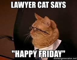 Lawyer Cat Meme - lawyer cat says happy friday lawyer cat 2 meme generator