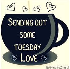 Happy Day Memes - 87 best tuesday greetings images on pinterest tuesday greetings