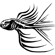 fish tribal tattoo style graphic you can change the color t