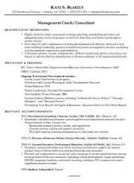 resume summary statement consultant consultant resume summary statement examples medical office