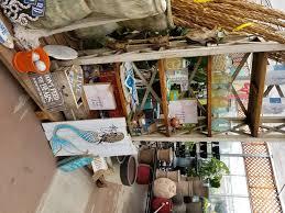 home and garden decor art knapp plantland