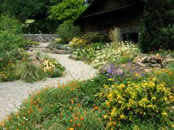 Botanical Gardens Images by Tilden Regional Park Regional Parks Botanic Garden