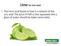 foods to eat in uric acid in hindi iय र क एस ड म