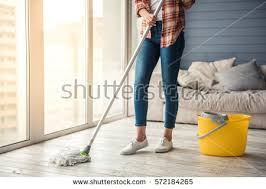 mopped stock images royalty free images vectors