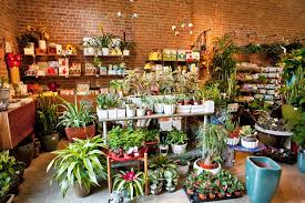 floral shops sprout home shopping in williamsburg