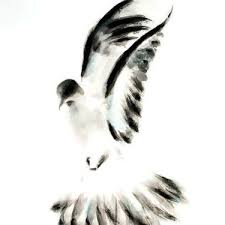 dove tattoo meaning and symbolism