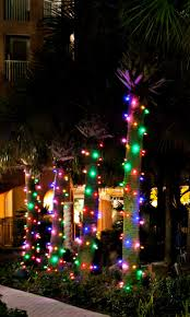 outdoor hanging tree lights led lights and solar