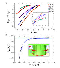 bulk elastic elastic potential a migration of colloids implies bulk colloid