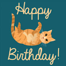 birthday cat memes 9 happy birthday