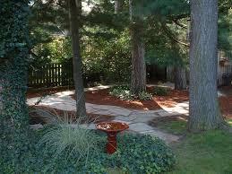 shady backyard landscapes pinterest backyard yards and