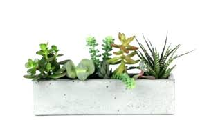 indoor windowsill planter window sill planter indoor indoor window planter windowsill indoor