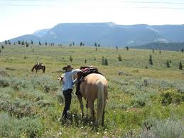 mustang ranch history activities at lonesome spur ranch bridger montana guest ranch
