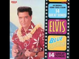 hawaiian photo albums blue hawaii