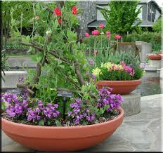 armeria terracast containers round barrel vase transitional
