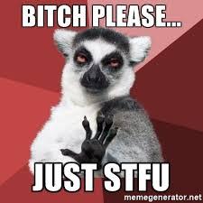 Bitch Please Meme Generator - bitch please just stfu chill out lemur meme generator
