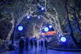 Lights At The Zoo by Guide To La Zoo Lights In Griffith Park Los Angeles