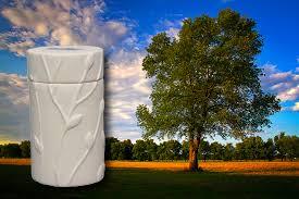memorial trees 16 varieties urns