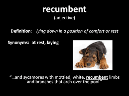 Synonyms Comfort Of Mice And Men By John Steinbeck Ppt Video Online Download