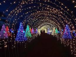 santa rosa christmas lights feel the christmas magical field the lights steemit