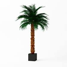 artificial palm tree 3d cgtrader