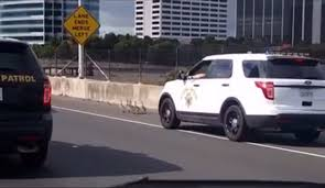 chp involved in low speed chase of baby geese on interstate 80