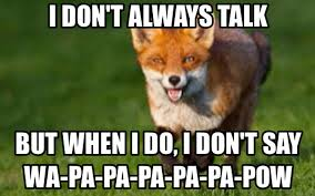 What Does The Fox Say Meme - what i feared general bmx talk bmx forums message boards