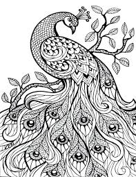coloring pages free cool coloring pages free coloring pages