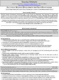 Professional Development Resume Business Development Professional Resume Examples Resume