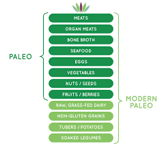 the modern paleo diet liveto110 com