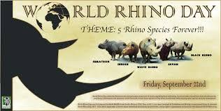 kalahari conservation society linkedin