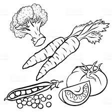 design coloring book vegetables illustration for coloring book design stock vector art