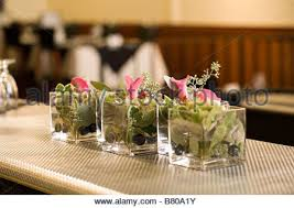 Small Glass Vase Small Glass Vases With Pink Flowers Stock Photo Royalty Free