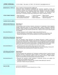 Sales Resumes Examples Free business resume business resume sample 8 business resume examples