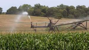 irrigated corn some iowa farmers turning to irrigation to help crops the gazette