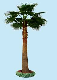 the large leaves small trees artificial mini palm trees buy