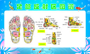 Foot Reflexology Map China Computer Foot Rest China Computer Foot Rest Shopping Guide