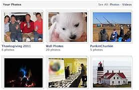 Pet Photo Albums Guide To Keeping Your Facebook Photos Private